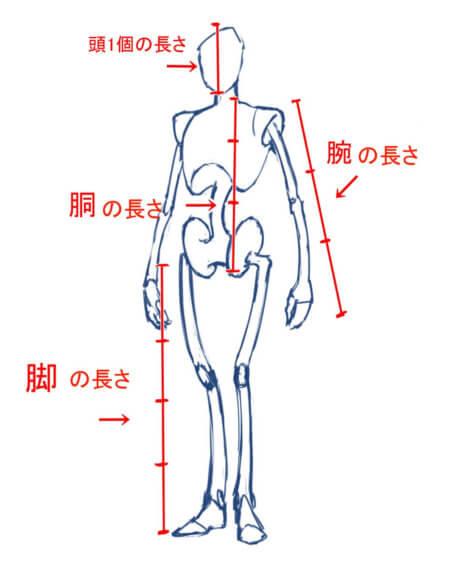 パース 人体